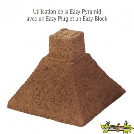EAZY PLUG PYRAMID 4.8L