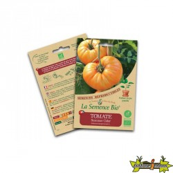 La semence Bio - Tomate summer cider