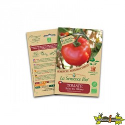 La semence Bio - Tomate reine des hatives