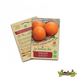 La semence Bio - Tomate orange queen