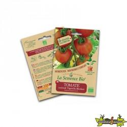 La semence Bio - Tomate cocktail tigerella bicolore