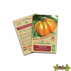 La semence Bio - Tomate albenga rouge ou liguria