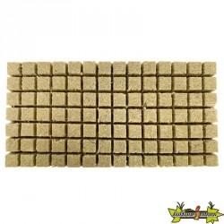 Plaques de 98 cubes de germination GRODAN 36x36x40mm