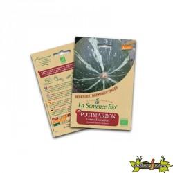 La semence Bio - Potimarron Green Hokkaïdo