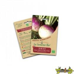 La semence Bio - Navet blanc globe à collet violet