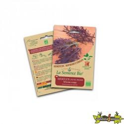 La semence Bio - Mesclun jeune pousse mizuna rouge