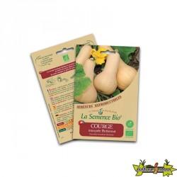 La semence Bio - Courge butternut musquée