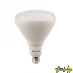 Sylvania - Grolux - 17W Ampoule led végétative E27
