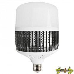 Advanced Star - Ampoule LED LedStar 200W - 6500K