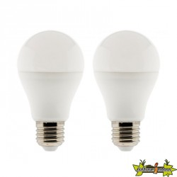 455015 LOT 2 AMPOULES LED STANDARD 10W E27 2700K 810LM