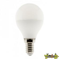455041 AMPOULE LED SPHÉRIQUE 5W E14 2700K 400LM