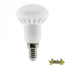 455060 AMPOULE LED R50 5W E14 2700K 400LM