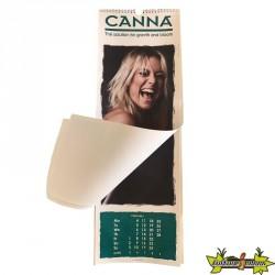 Canna - Calendrier 2020