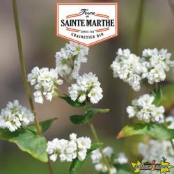 La ferme Sainte Marthe - 400 grammes Sarrasin
