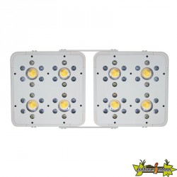Led Horticole LED HPS KILLER 2 X 120W - INDOORLED ( équivalent 400w hps) - 60/68x28.5cm