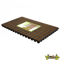 Easy Plug - Plaque de 150 cubes de germination