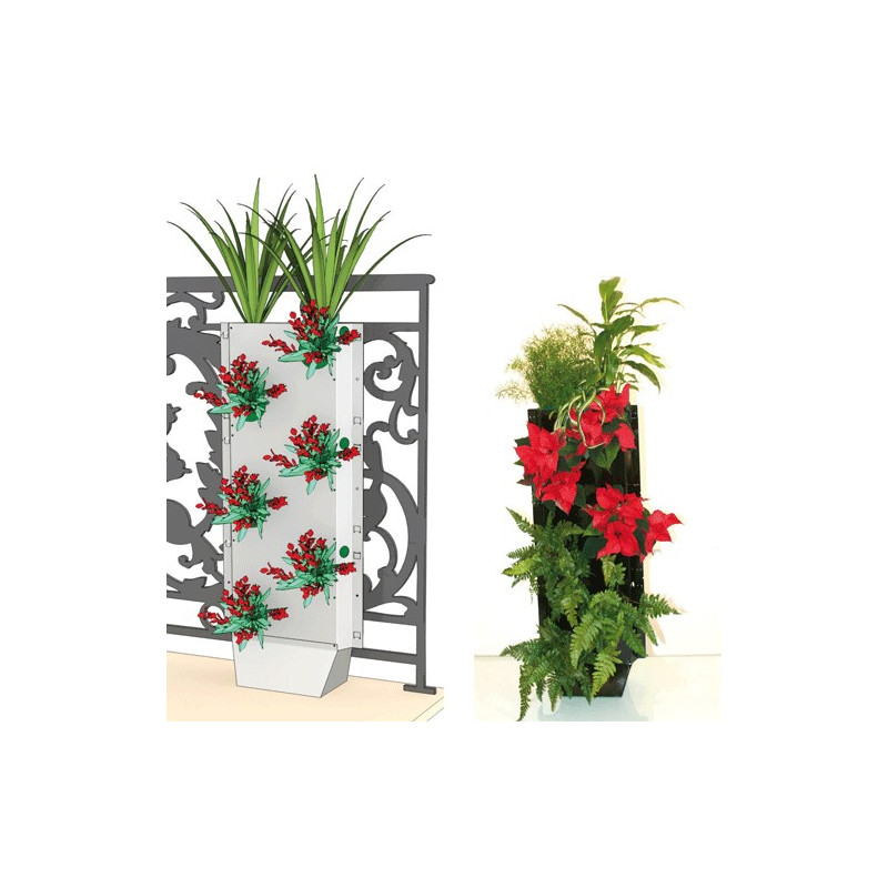 C-GREEN - KIT CLOTURE VEGETAL AVEC PIED 2 FACES 6 PLANTES 87H X 33 L