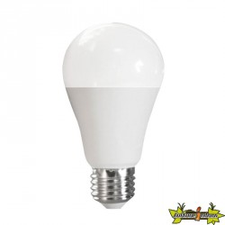 ADVANCED STAR AMPOULE LED A60 12W 6500K E27