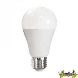 ADVANCED STAR AMPOULE LED A60 9W 6500K E27