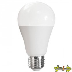 ADVANCED STAR AMPOULE LED A70 15W 2700K E27