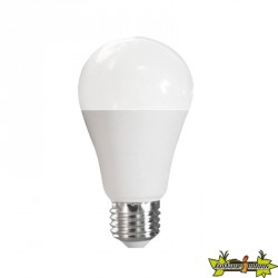 ADVANCED STAR AMPOULE LED A60 12W 2700K E27