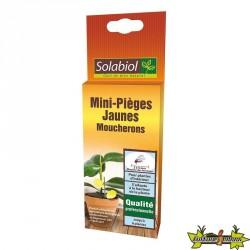 MINI-PIÈGES JAUNES - MOUCHERONS - SOL