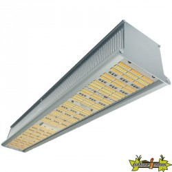 Indoorled - HPS Killer LED Bar 310W