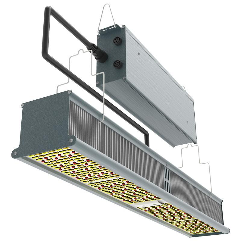 INDOOR LED HPS KILLER 310 W LED BAR