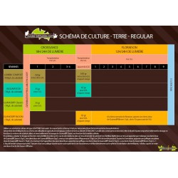 Guano Diffusion - Tableaux de culture