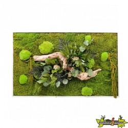 Naturalys - Nature réctangle XL 100x60cm stabilisé