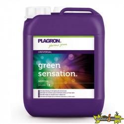 PLAGRON GREENSENSATION 10L