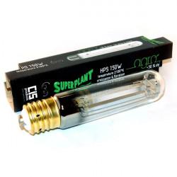 Superplant - Ampoule 150W HPS AGRO , lampe croissance et floraison , douille E40