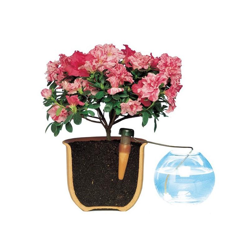 blumat syst me irrigation 12 plantes sans pompe sans lectricit arrosage vacances blumat. Black Bedroom Furniture Sets. Home Design Ideas