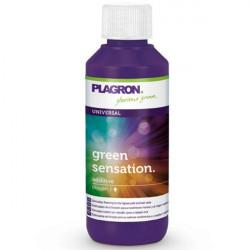 Plagron Green sensation 100ml , booster de floraison , augmente les principes actifs