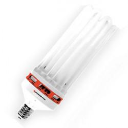 Pro-Star - Ampoule CFL 8 U 300 W 2100 °K , lampe economique floraison ,E40