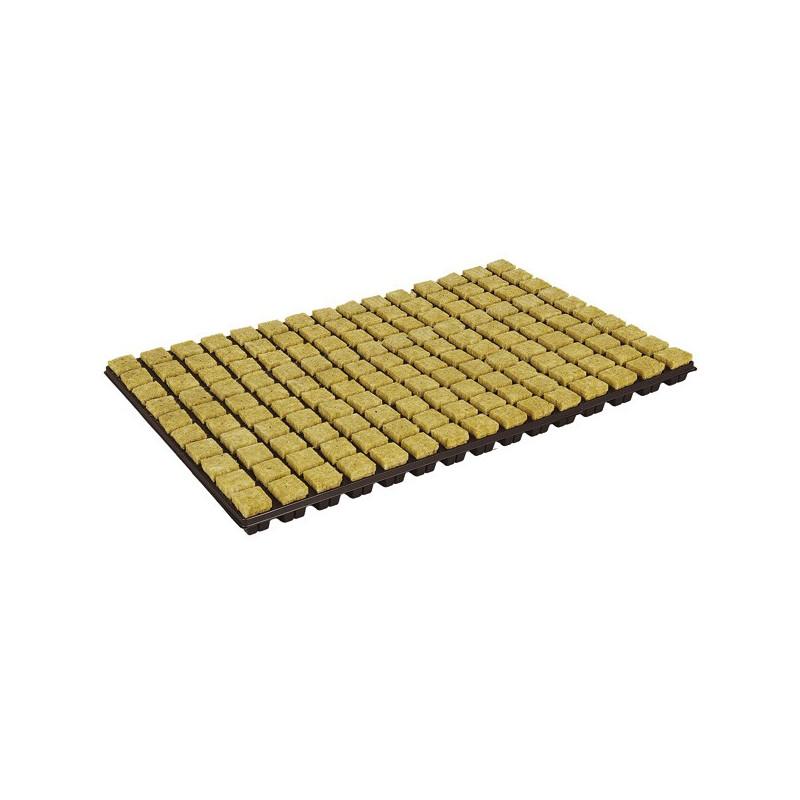 Plateau 150 cubes de germination , bouturage laine de roche cubes 2cm , Grodan