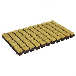 GRODAN PLAQUE laine de roche 77 CUBES 36X36X40mm