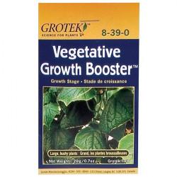 Grotek Vegetative Grow 20 g , booster de croissance en poudre