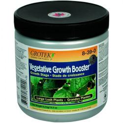 GROTEK Growth Vegetative Booster 300 g , booster de croissance