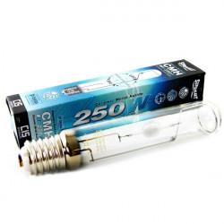 AMPOULE SUPERPLANT CMH 250W , douille E40 , lampe de croissance MH plus performant de 50%