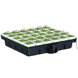 Platinium HydroStone 120 (120 x 120 x 28 cm) , système hydroponique , cubes 15x15