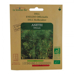 GRAINES BIO -ANETH OFFICINALE