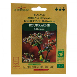 La Semence Bio - Bourrache officinale