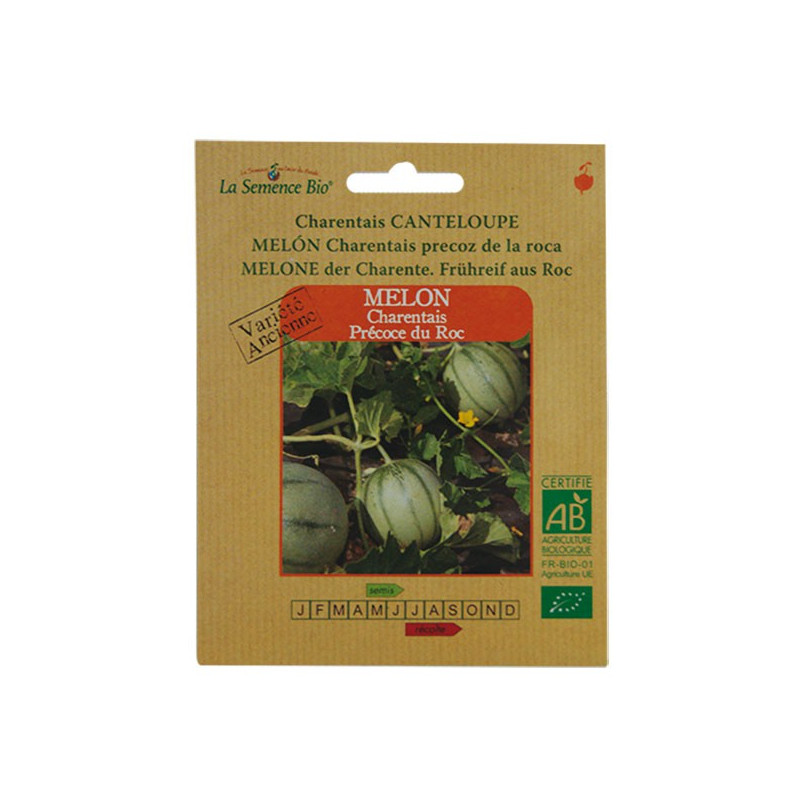 La Semence Bio - Melon Charentais précoce du Roc