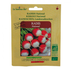 GRAINES BIO -RADIS NATIONAL