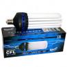 Superplant - Ampoule CFL 250W Croissance 6400K° V2, lampe economique croissance ,E40