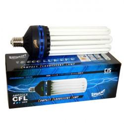 Superplant - Ampoule CFL 300W Croissance 6400K° V2, lampe economique croissance ,E40