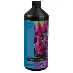Engrais ATAMI - B'CUZZ Blossom Builder Liquid FR 1 L