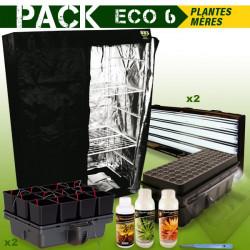 PACK chambre de culture PLANTES MERES - BOUTURES ECO 6