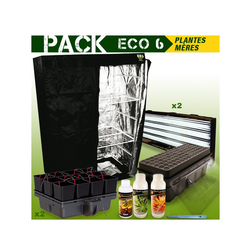 PACK chambre de culture PLANTES MERES - BOUTURES ECO 6